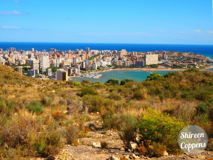 Serra Grossa Alicante